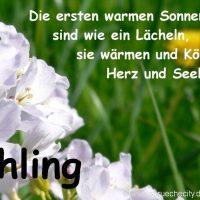 Frühling Sprüche