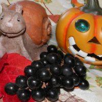 Halloween Sprüche