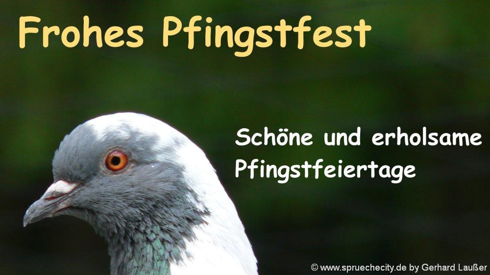 pfingstpruch-lustige-spruechebilder-lieber-wunsch-frohe-pfingsten