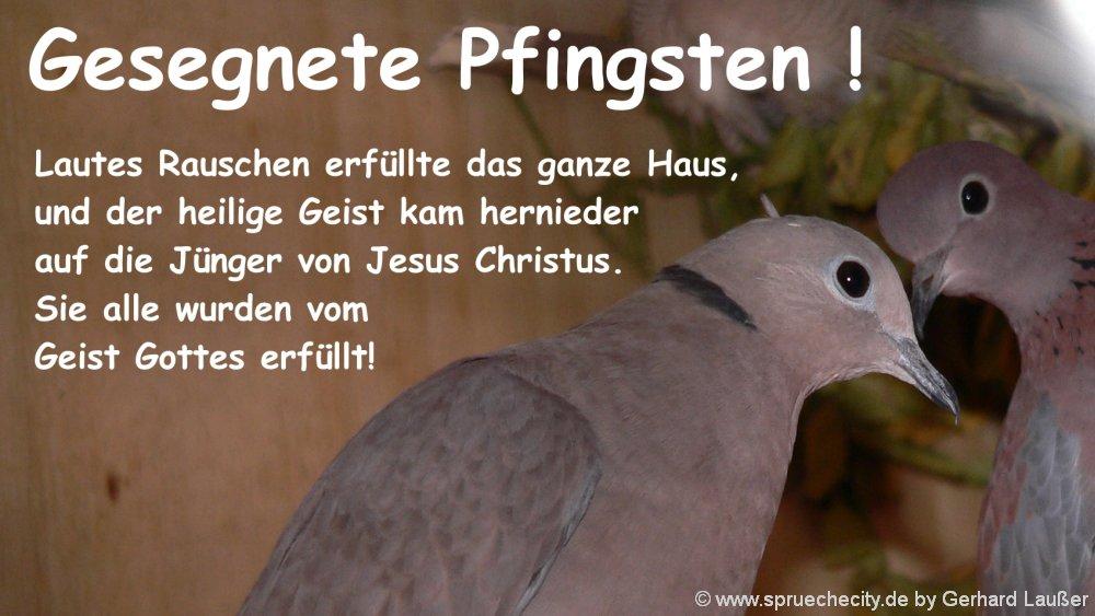 pfingstspruch-heiliger-geist-pfingstwunsch-christliche-zitate-taube