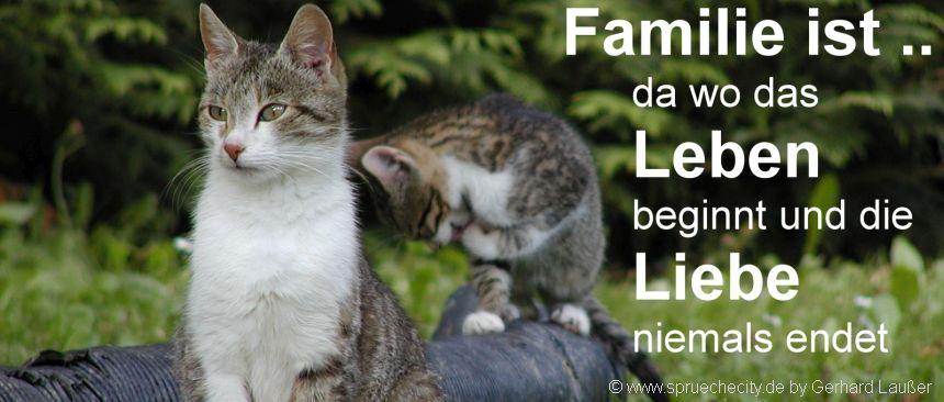 Schöne Familien Sprüche kurze Zitate