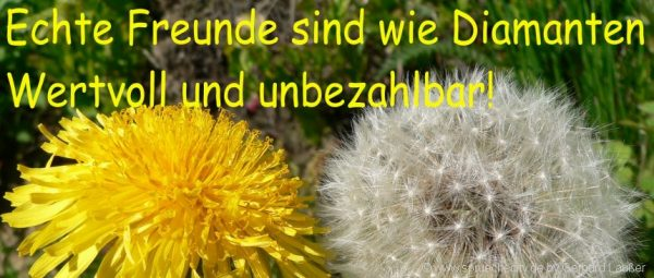 Image Result For Zitate Kurz Liebe